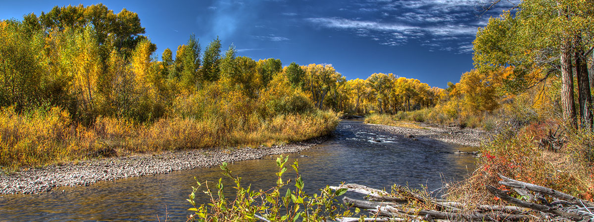 The Conejos River