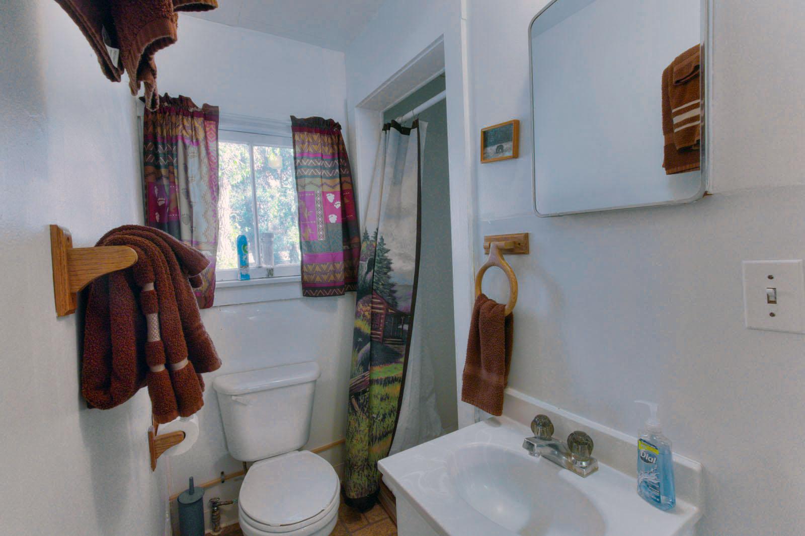 Rustic Bathroom Decors Picture
