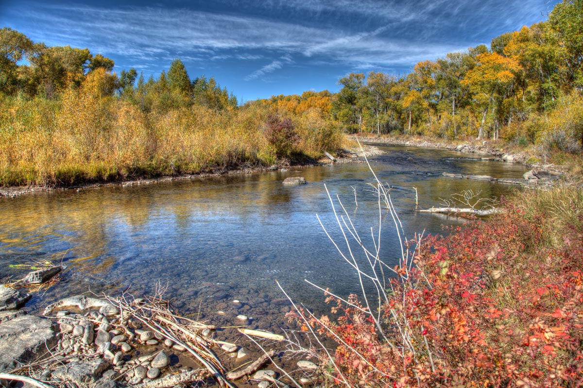 The Beautiful Main Stem of the Conejos River