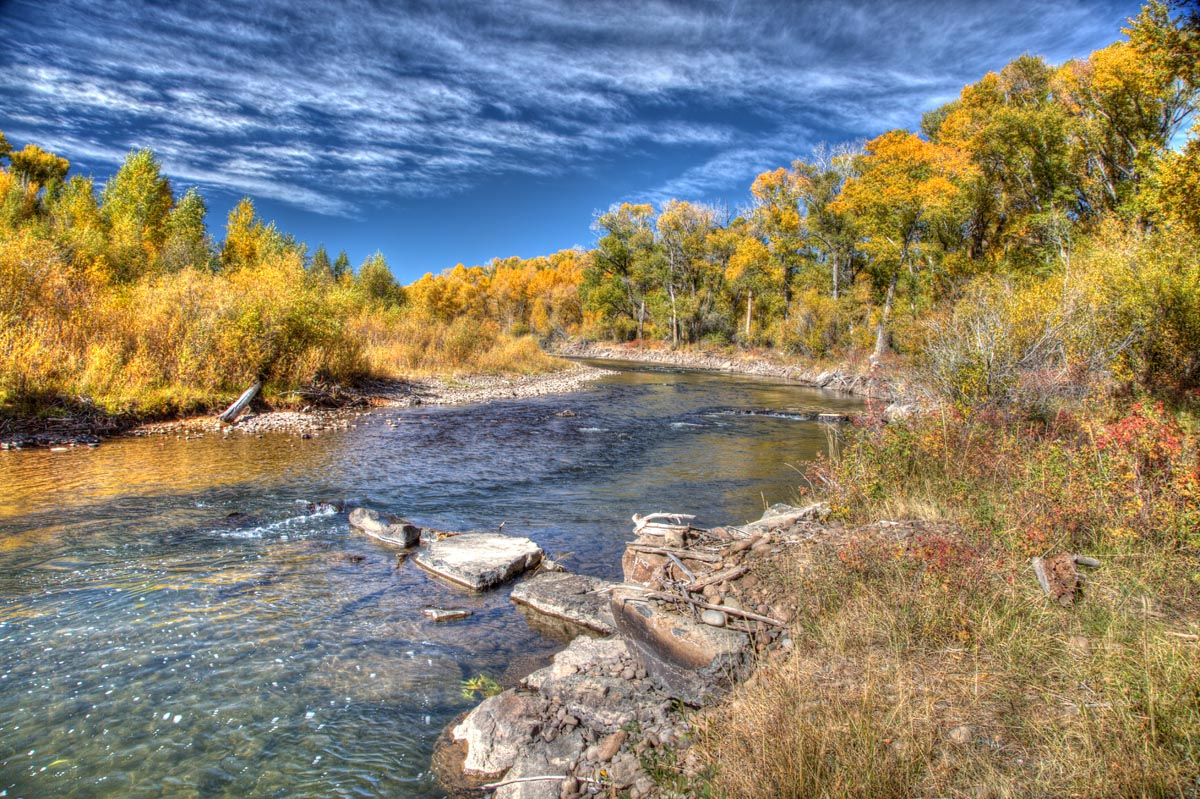 This pretty stretch of the Conejos River is just a short walk from the campground