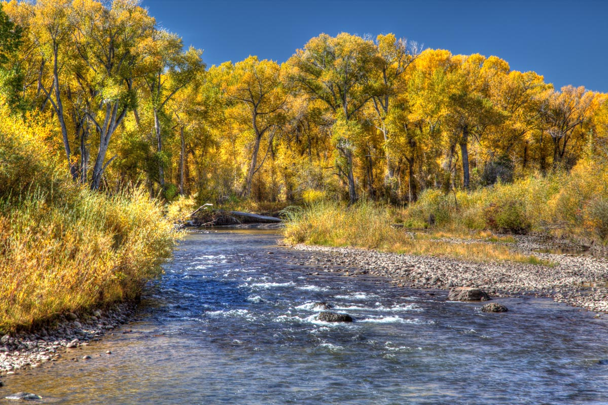 Fishing the conejos river twin rivers cabins rv park for Colorado fishing limits