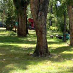 Twin Rivers Cabins and RV Park Grounds